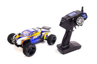 1/18 EP 4WD Off Road Truggy (Brushed, Ni-Mh)