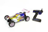 X-STR 1/10 EP 4WD Off Road Buggy (Brushed, Ni-Mh)