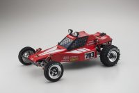 1/10 EP 2WD Racing Buggy TOMAHAWK